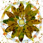 mandala-of-leaves-iii-sm