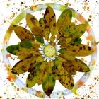 mandala-of-leaves-iii-sm